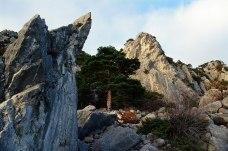 Скалы и каменный камень