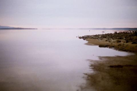 Из устья