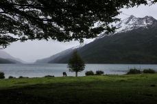 Lago del Desierto, уходим из Аргентины